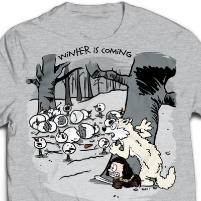Winter Is Coming Ladies T-Shirt